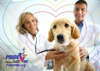 PrideVMC-Image5-Clean
