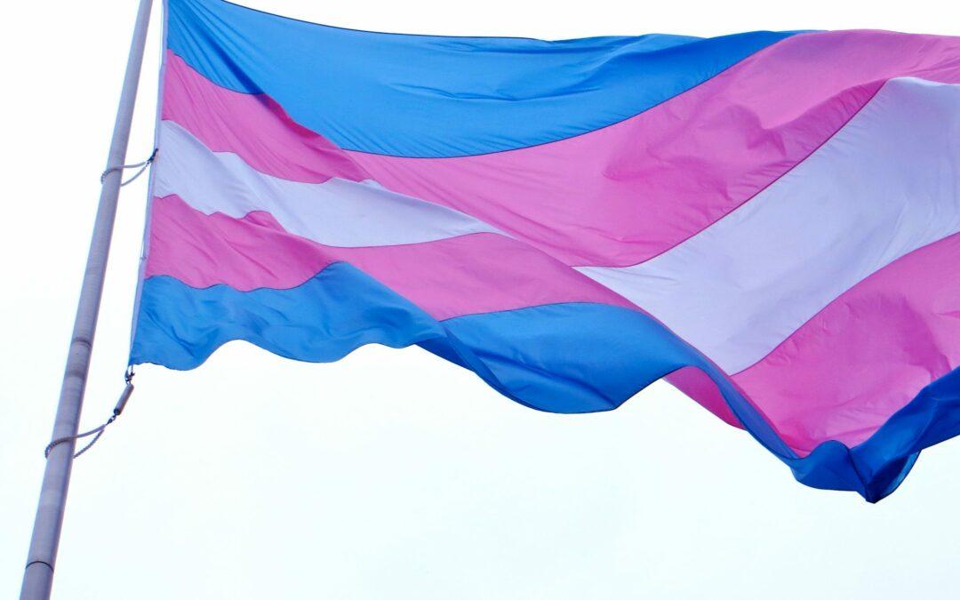 blue, pink and white transgender flag