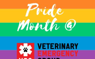 Pride Month at VEG